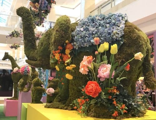 Elephant topiary at Westfield Montgomery Mall