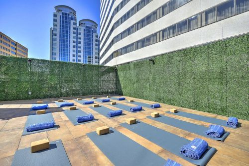 Rooftop yoga at Truebody Fitness